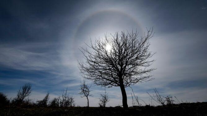 Słońce otoczyła świetlista aureola