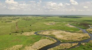 Ornitolog Adam Zbyryt o sytuacji w Biebrzańskim Parku Narodowym