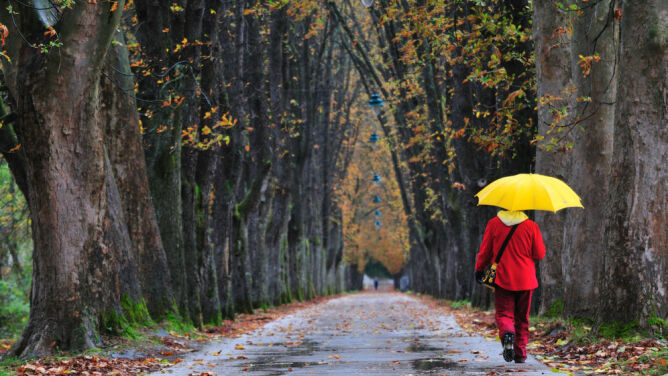 Prognoza pogody na dziś: deszczowa północ i silne porywy wiatru